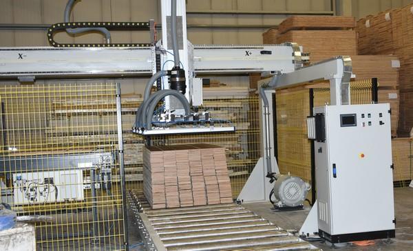 AMR Kartezyen Yükleme Robotu (2)